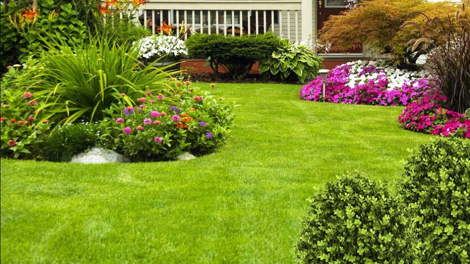 Keeping your yards happy and healthy with proactive lawn care services