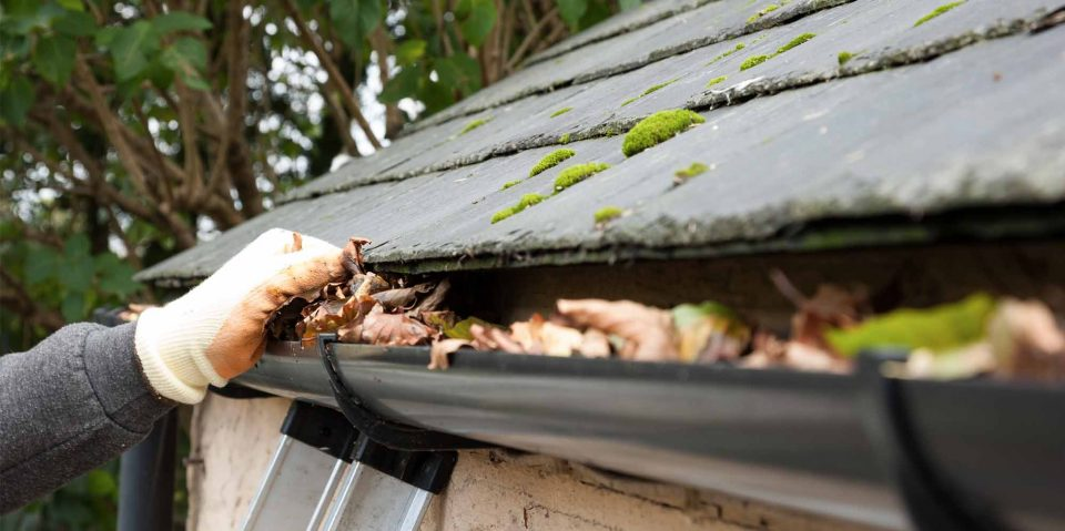 Gutter Replacement Adelaide