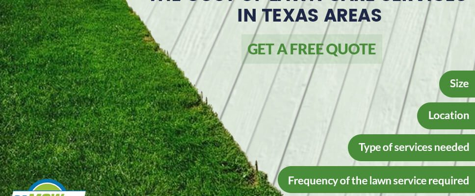 The Cost of Lawn Care Services in texas area