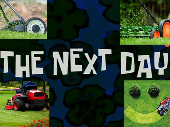 nextday-gomow